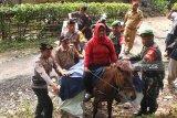 Distribusikan logistik Pemilu tembus hutan TN Meru Betiri dengan berkuda