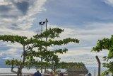 Pasokan BBM di Sulteng aman pascakapal tanker tabrak dermaga TBBM Poso