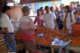 Harga cabai rawit di Kota Manado turun