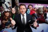 Perayaan akhir film 'Avengers'