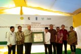 Begini cara UNDP-Yayasan Tanoto tingkatkan ekonomi petani sawit Kabupaten Pelalawan