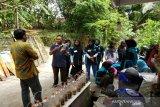 Masyarakat di Kulon Progo diberi pelatihan pengolahan sampah