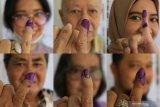 Selain Ahmad Dhani, ini daftar artis yang berpeluang duduk di Senayan
