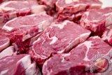 PT Berdikari awaits approval to import Brazilian beef