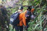 Basarnas temukan 12 pendaki Gunung Mekongga kondisi selamat