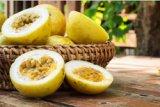 Manfaat biji markisa untuk kesehatan, terutama  kulit dan rambut