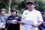 Pemkab Pulpis ingin hutan rakyat menjadi solusi bagi masyarakat