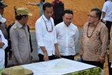 Dewan riset siapkan konsep penguatan Kalteng calon ibu kota negara