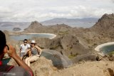 Pengawasan kawasan Taman Nasional Komodo menggunakan teknologi digital