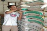 Pedagang : Pasokan beras lancar sehingga harganya bertahan