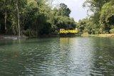 Destinasi wisata edukasi bambu di Malang