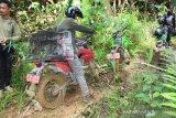 BKSDA Lepasliarkan monyet ekor panjang di Pararawen