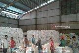 Stok beras di Sumsel dan Babel cukup 10 bulan kedepan