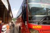 Ada trayek Damri dari Pangkal Pinang--Palembang--Lampung--Jakarta