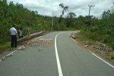 Pantau Daerah Rawan Kecelakaan, Dishub Lakukan Survei Jalan