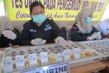 BNN periksa urine 49 orang pilot di Bandara Pekanbaru