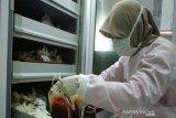 Persediaan darah PMI Banjarnegara menipis