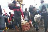 Ribuan pemudik  tiba di Pelabuhan Simboro Mamuju