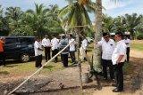 Setelah Krayan, Gubernur Gagas Toko Indonesia di Sebatik