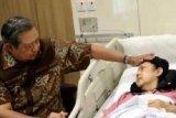SBY berencana membukukan kisah Ani Yudhoyono
