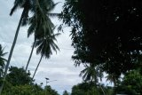 Pemudik sepi di jalur trans Sulawesi Majene pada H-2 Lebaran