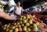 Harga tomat di Kota Manado naik 33,33 persen