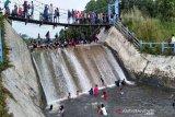 Barito Utara dapat Rp1,5 miliar untuk pembenahan objek  wisata