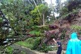 Tiga kecamatan di Agam dilanda banjir dan longsor pascahujan lebat