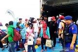 Sudah 3.156 pemudik kembali melalui Pelabuhan Sampit