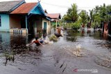 Banjir rendam puluhan rumah warga di Kotawaringin Barat, Kalteng