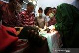 Tim medis Fakultas Kesehatan Hewan (FKH) Universitas Syiah Kuala bersama Balai Konservasi Sumber Daya Alam (BKSDA) Aceh mengobati kaki beruang madu (Helarctos malayanus) yang terluka akibat kena jeratan babi di Banda Aceh, Aceh, Jumat (14/6/2019). Salah satu dari dua beruang madu yang terkena jeratan di Kabupaten Aceh Barat Daya terpaksa di amputasi kakinya akibat luka dan tulang kaki yang terputus. Antara Aceh / Irwansyah Putra.