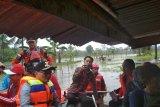 Banjir Kolaka Timur Rendam 1.216 Hektare Sawah