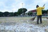DLH membersihkan sampah sisa petasan di Alun-Alun Utara Yogyakarta