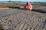 Warga menjemur ikan di pantai Tanjung, Pamekasan, Jawa Timur, Sabtu (15/6/2019). Lebih dari sepekan produksi ikan di daerah itu turun dari biasanya 500 kg - 1.000 kg per hari per nelayan  menjadi sekitar 50 kg hingga 75 kg karena sejumlah nelayan belum melaut sejak H-3 Ramadhan 1440 lalu. Antara Jatim/Saiful Bahri/zk.