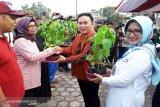 Gubernur ajak masyarakat Kalteng bercocok tanam pangan
