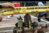 Polisi memasang garis polisi mengelilingi arca ganesha setinggi 33 centimeter di Desa Krenceng, Kediri, Jawa Timur, Senin (17/6/2019). Menurut arkeolog dari Dinas Kebudayaan dan Pariwisata, arca yang ditemukan saat pembuatan septic tank (pembuangan tinja) warga tersebut diperkirakan peninggalan masa kerajaan Kediri. ANTARA FOTO/Prasetia Fauzani/nym.
