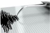Sebanyak enam gempa susulan terekam pascagempa utama magnitudo 7,1
