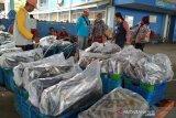 Hindari penyimpangan, Kabupaten Pati mulai terapkan E-TPI