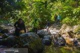 Program kemitraan konservasi upaya egah kebakaran hutan