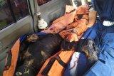 28 orang tewas akibat kebakaran pabrik mancis di Langkat