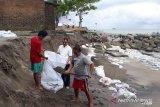 Berkutat karung pasir menahan abrasi pantai di Sungai Limau Padang Pariaman