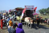 Warga menyaksikan Festival Pegon
