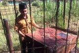 Desa Wukirharjo mengaktifkan kembali sumur bor antisipasi kekeringan