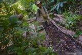 Kanwil perbendaharaan Riau akan sosialisasikan perubahan pencairan Dana Desa