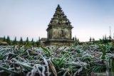 Wilayah Dieng membeku akibat suhu dingin