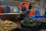 Menteri Edhy upayakan peroleh izin ekspor kerang ke Uni Eropa