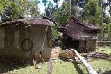 12 gajah ngamuk rusak rumah dan kebun milik warga di Nagan Raya Aceh