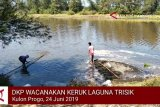 VIDEO: DKP Kulon Progo keruk Laguna Trisik