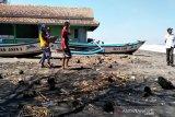 Nelayan Kulon Progo kesulitan menangkap lobster