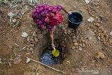 Seorang warga mengambil air dari sumur buatan di Desa Parungmulya, Ciampel, Karawang, Jawa Barat, Selasa (2/7/2019). Akibat musim kemarau sebagian warga di wilayah itu terpaksa membuat sumur buatan untuk melakukan aktivitas Mandi Cuci Kakus (MCK) karena sumber air di rumah mereka mengalami kekeringan. ANTARA JABAR/M Ibnu Chazar/agr